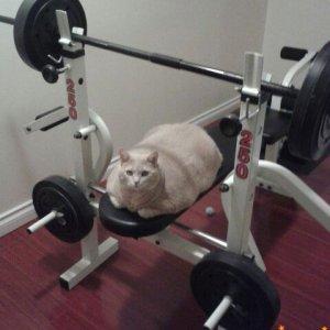 Anche oggi un duro allenamento