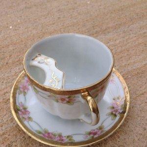 Antica tazza salva-baffi