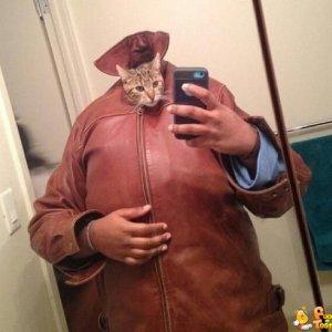 Autoscatto del gatto