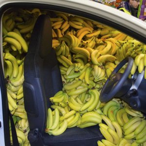 Banane, banane ovunque!