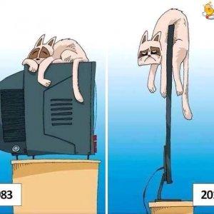 Come cambiano i tempi
