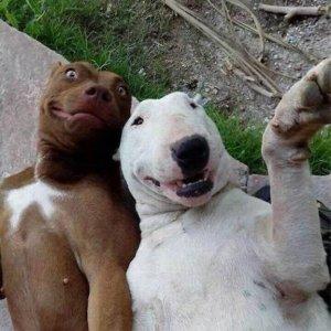 E' sempre il momento di un selfie