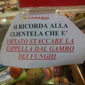 Funghi al supermercato