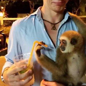In Thailandia ho trovato un amico