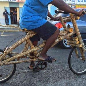 La bicicletta ecologica