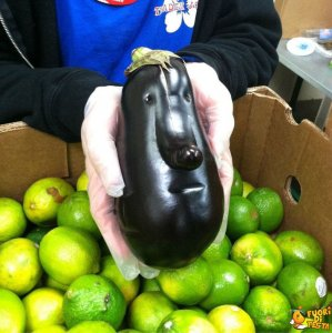 Mangereste mai questa melanzana?