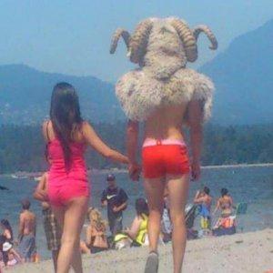 Nel frattempo in spiaggia...