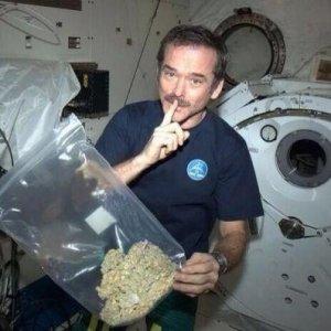 Niente è illegale nello spazio