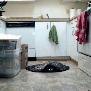 Oscure presenze in casa