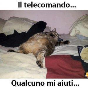 Passa il telecomando