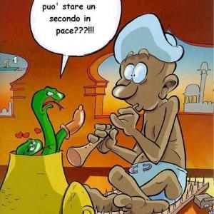 Povero serpente