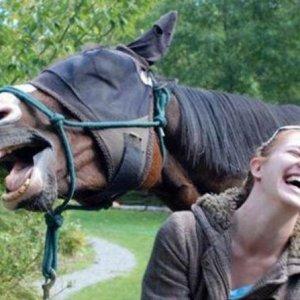 Risate tra amici
