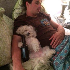 Serata alcolica devastante