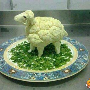 Una pecora-broccolo