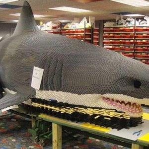 Uno squalo di lego