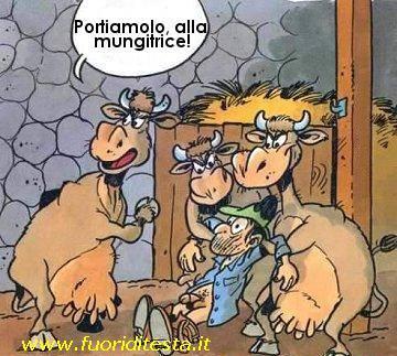 Mucche cattive