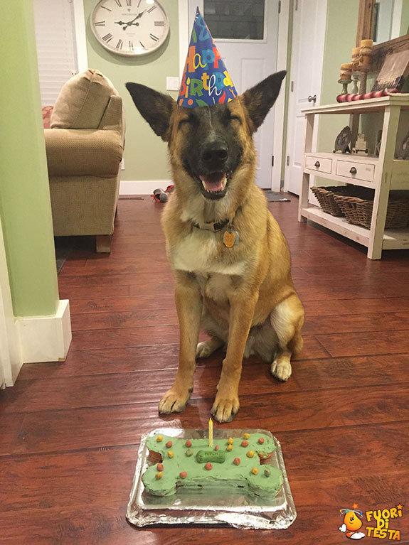 Sorridi, è il tuo compleanno!