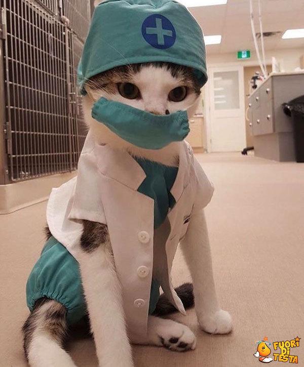 Tutti vorrebbero un medico così