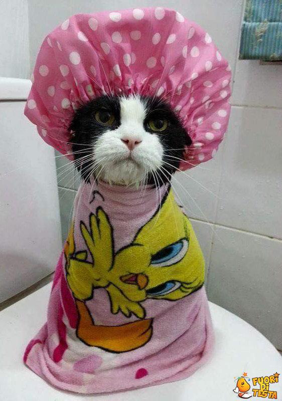 Voglio fare un altro bagno!