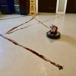 Cane fa le pulizie