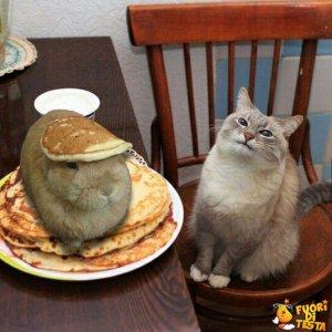 C'è qualcuno nei miei pancakes