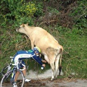 Ciclista ritrova le energie