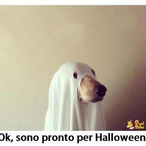 Costume di Halloween