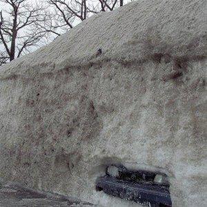 Dov'è l'auto?