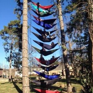 Fila di amache sugli alberi