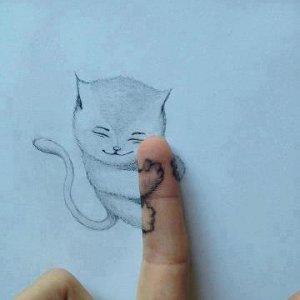 Gatto sul dito