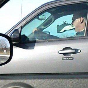 Gesti incomprensibili in auto
