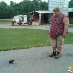 Giocando col gatto
