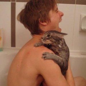 Mai fare il bagno col gatto
