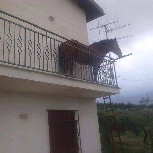 Nel frattempo in Sicilia