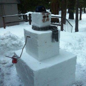 Pupazzo di neve a cubetti