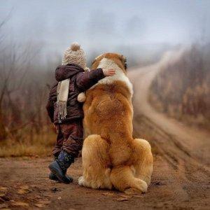 Saremo amici per sempre
