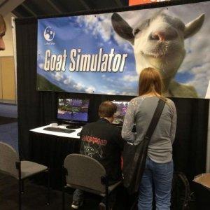 Simulatore di capre