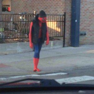 Spiderman ha passato giorni migliori