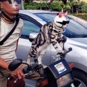 Un motociclista speciale