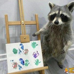 Un procione mostra la sua arte
