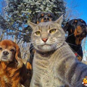 Un selfie epico