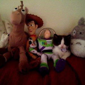 Vi presento i miei amici
