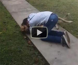 Ritrova il suo cane dopo 8 mesi: l'incontro è commovente