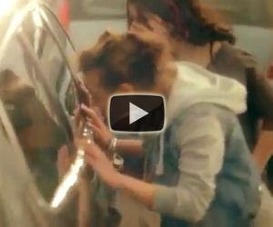 Vedono un cane chiuso dentro un'auto sotto il sole e lo salvano
