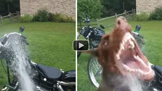Quest'uomo lava la moto ma si rivela essere un compito difficile